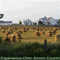 Amish Brown Bag by Lenzner Tours