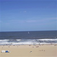 Fall in Love with Coastal Virginia by Lenzner Tour