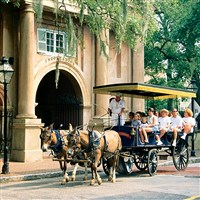 Charleston: S. Hospitality by Lenzner Tours