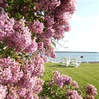 Mackinac Island by Butler Motor Tours