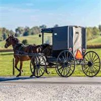 Ohio Amish by Lakefront Lines Cleveland