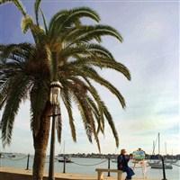 Florida Getaway: Amelia Island & St. Augustine -LT