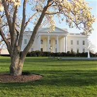 Spring in DC by Lenzner Tours