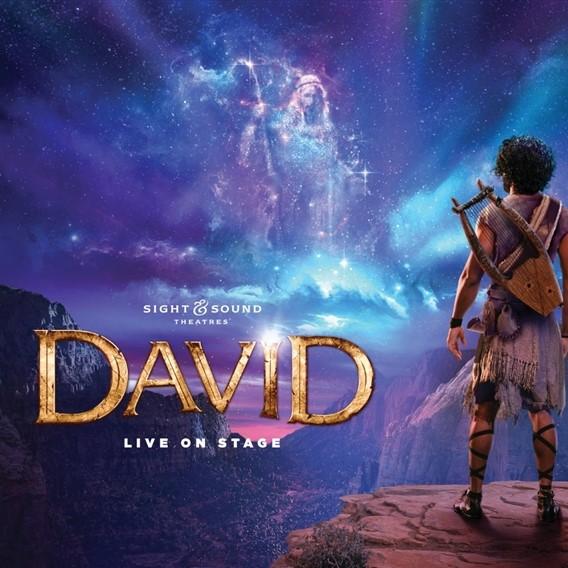David in Lancaster Plus by Lenzner Tours