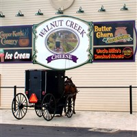 Amish Harvest Delights by Lenzner Tours